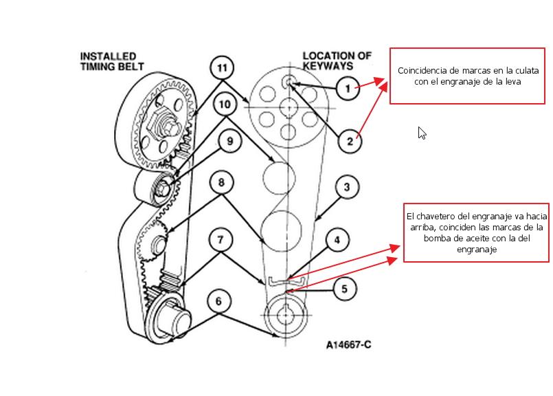 sincronisacion de cadena del tiempo de un mercuy tracer 1 9